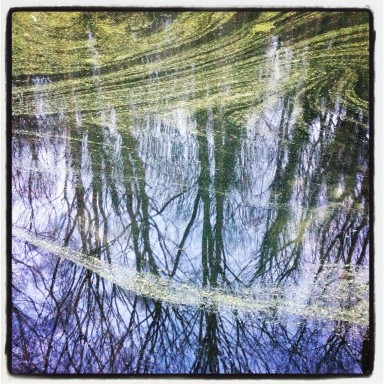 Stagnant Reflections